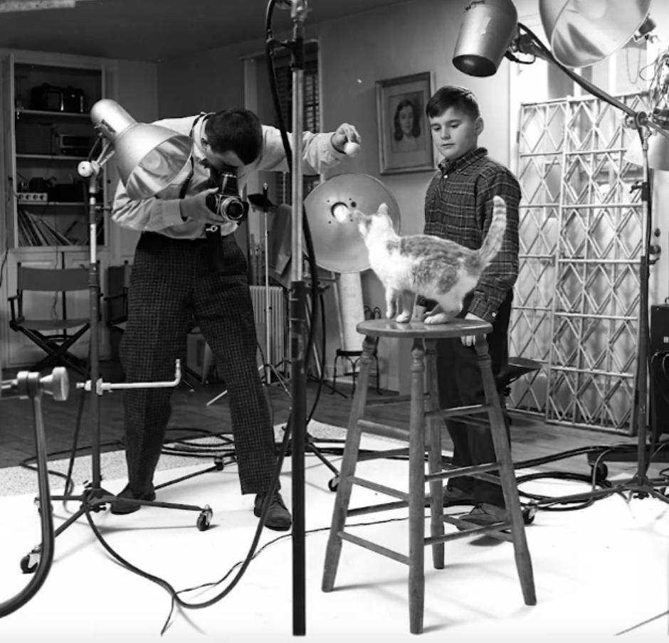 Walter Chandoha nel suo studio fotografico