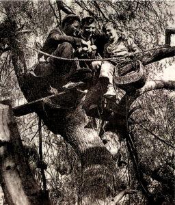 Scarpitta sull'albero in compagnia dei fratelli Hunter
