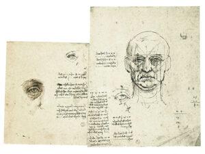 Leonardo da Vinci. Studi proporzioni del volto e dell'occhio, con note Biblioteca Reale, Torino