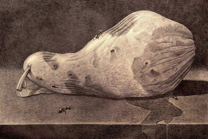 Marcello Carrà, Memento mori, penna biro su carta, 80x120 cm, 2013