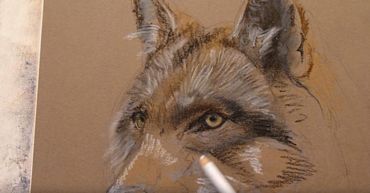 Disegnare un lupo magnifico tutorial storia e consigli for Disegni di lupi facili