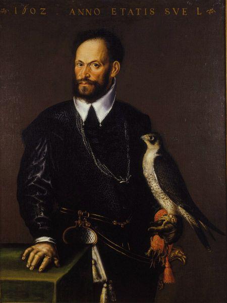 cacce  falcone