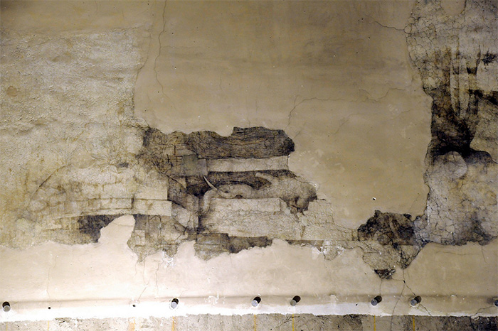 Dettaglio del Monocromo di Leonardo da Vinci