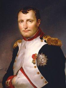 Il ritratto di Napoleone, realizzato da David nel 1813