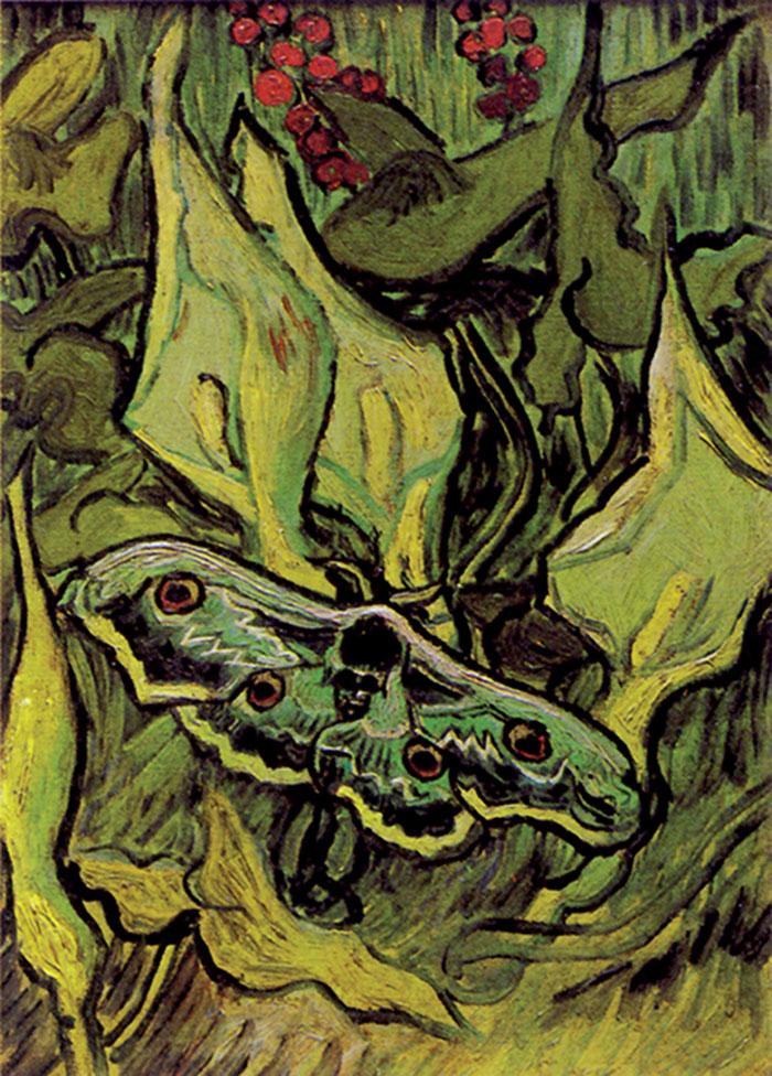 Vincent van Gogh, Farfalla testa-di-morto su un fiore