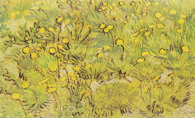Vincent van Gogh, Prato con fiori gialli