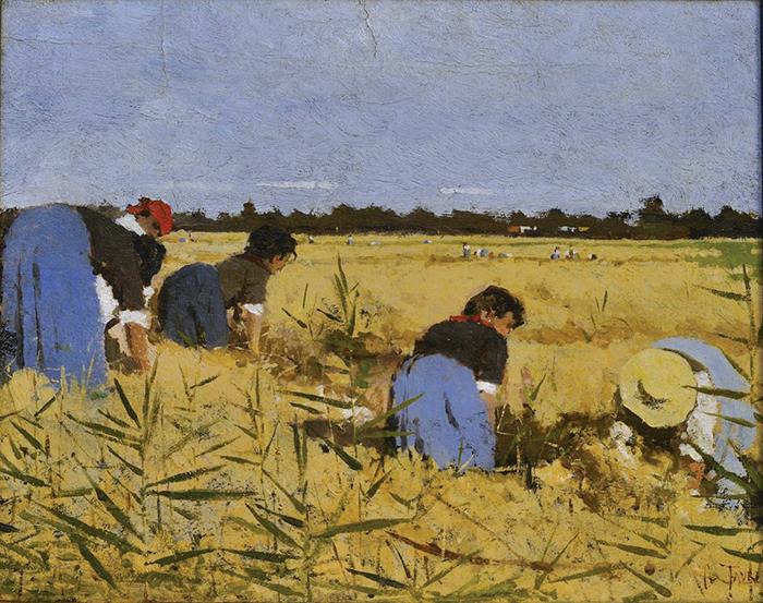 Giacomo Favretto, Spigolatrici. La mietitura del riso nel veronese, 1877, olio su cartone, cm 32x40,7
