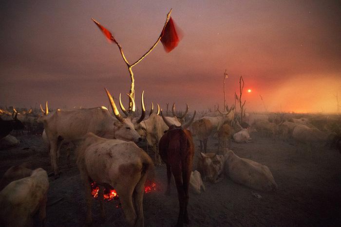 Un accampamento di allevatori nella notte mentre sorge la luna piena Jonglei, Sudan del Sud 2012 © Kazuyoshi Nomachi