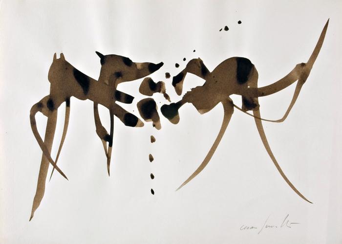 Cesare Peverelli, Les Mouettes, 1960 Inchiostro su carta © Cesare Peverelli, Raccolta del disegno, Galleria civica di Modena