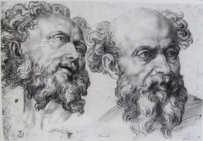 Baccio Bandinelli, Studi di teste, matita nera, Firenze, Gabinetto Disegni e Stampe degli Uffizi