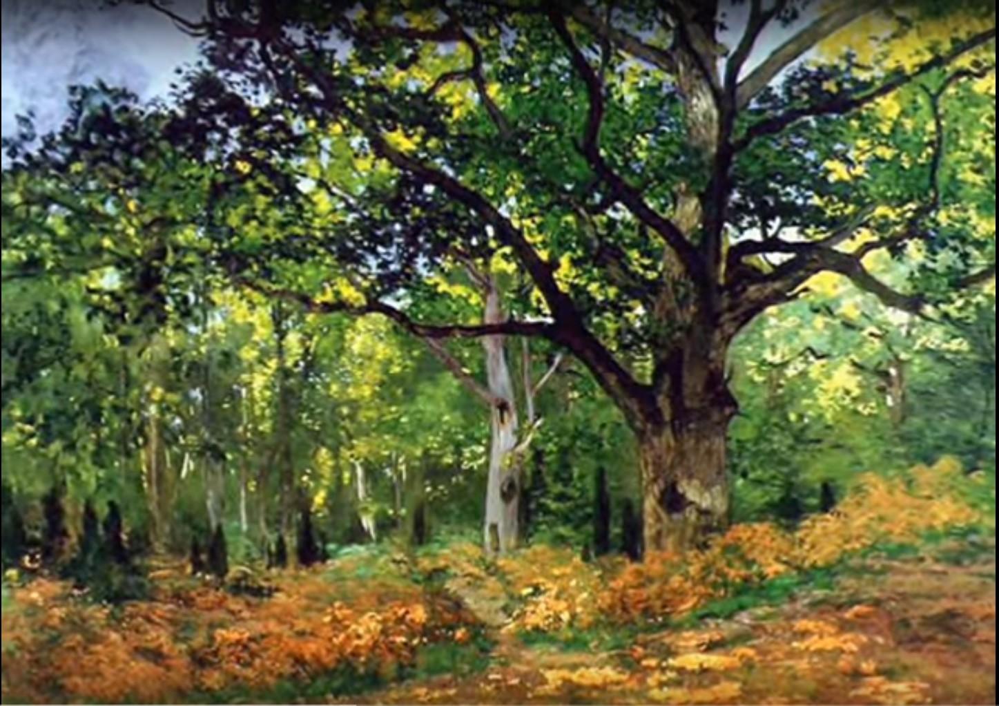 La grande quercia e il bosco dipinti da Claude Monet