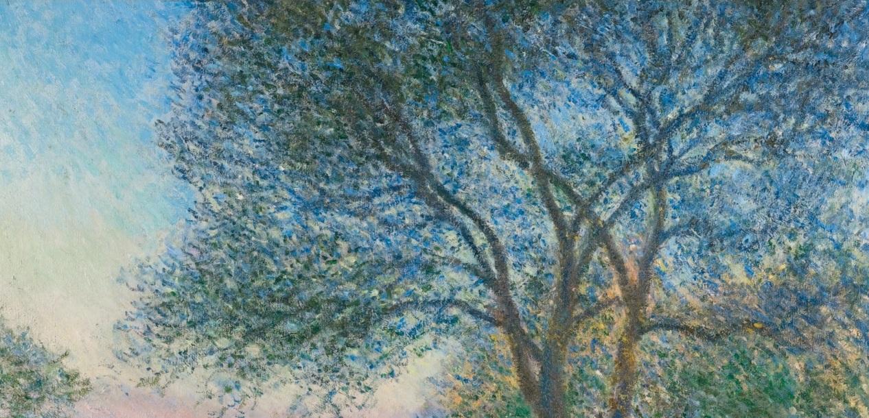 Come disegnare o dipingere un albero tanti tutorial for Foto di alberi da colorare