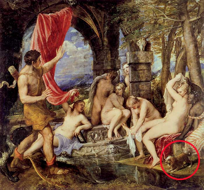 """Tiziano, Diana e Atteone. Il piccolo cane che abbaia indica allo spettatore che Atteone irrompe, non desiderato, sulla scena. Attraverso la raffigurazione di questa basilare presenza animale, l'artista carica di conflittualità drammatica il """"fotogramma"""" pittorico"""