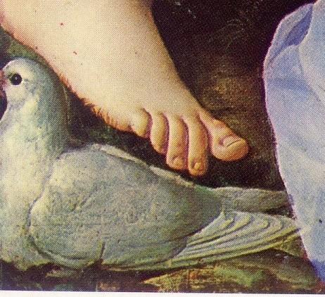 bronzino-allegoria di venere e cupido-parte 1-rifatta (8)