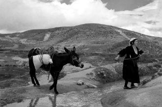 DonnainCalabria1951