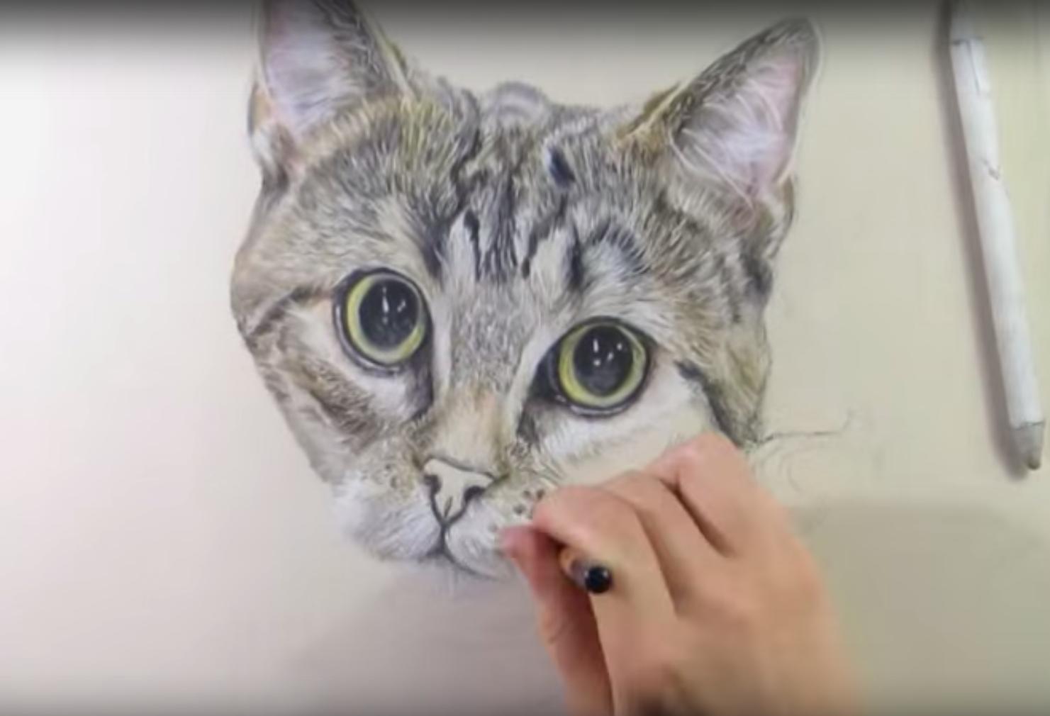 Disegnare dipingere gatti gattini gratis tutti i for Immagini di pesci da disegnare