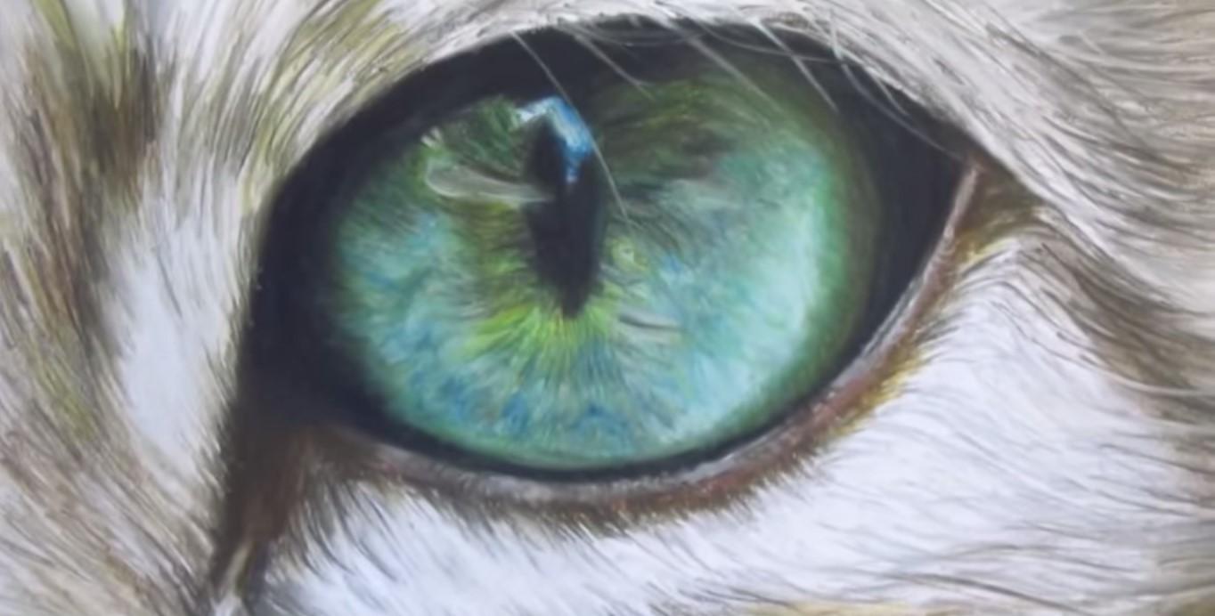 a occhi di gatto