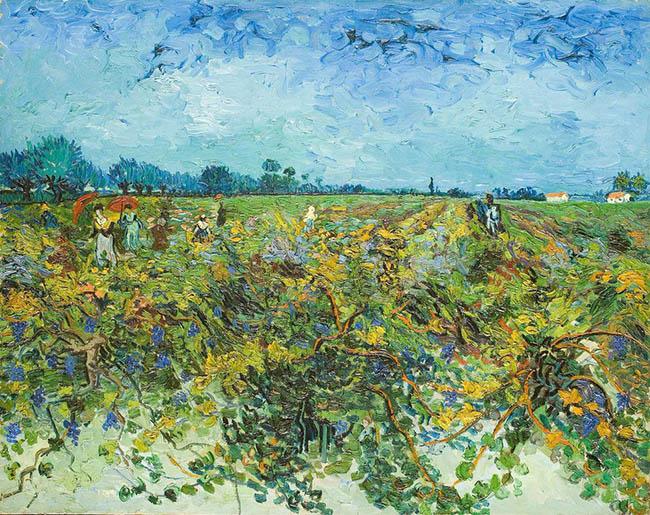 Vincent van Gogh La vigna verde Olio su tela, cm 73,5 x 92,5 1888 Kröller-Müller Museum, Otterlo © Kröller-Müller Museum, Otterlo