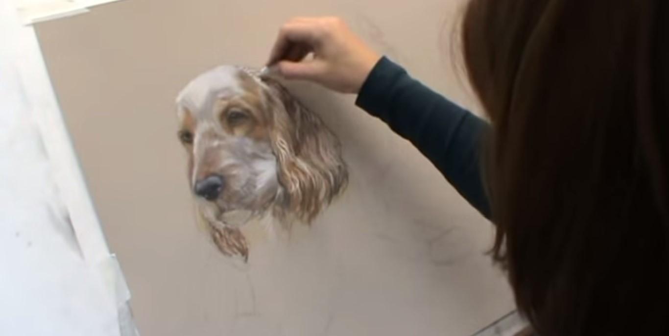 Disegnare, colorare e dipingere un cocker spaniel