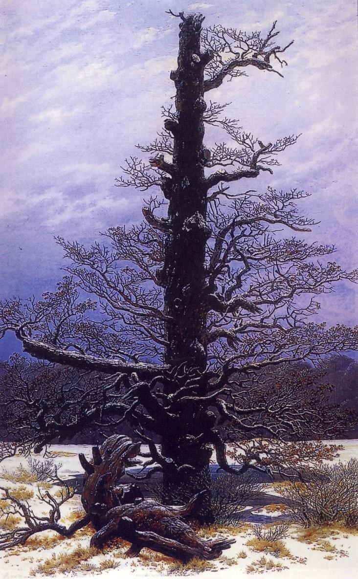 C.D.FRIEDRICH, Quercia nella neve, 1827-8, olio su tela, cm. 44 x 35, 5, Colonia,  Wallraf-Richartz-Museum