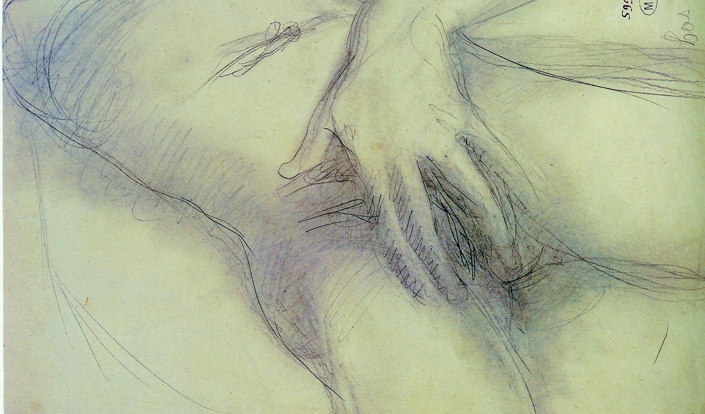 auguste-rodin-mano-sopra-un-sesso2 (1)