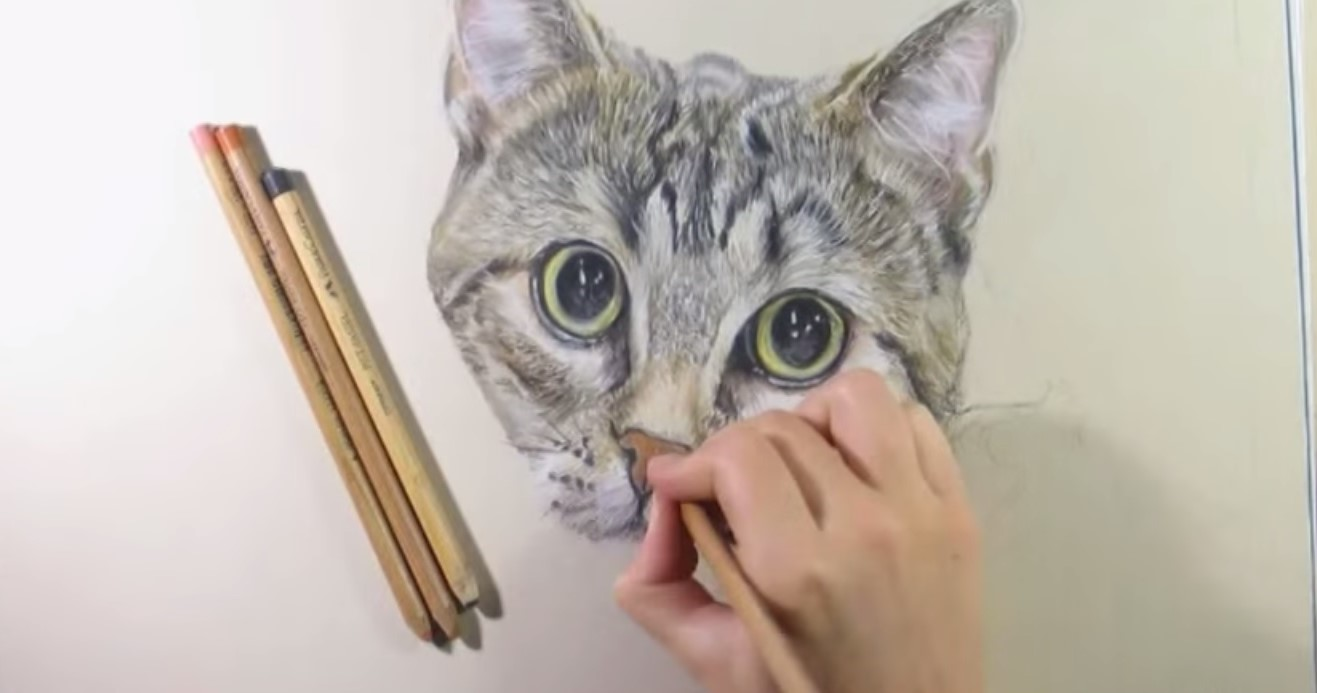Extrêmement Disegnare dipingere gatti gattini – Gratis tutti i tutorial e  EC48