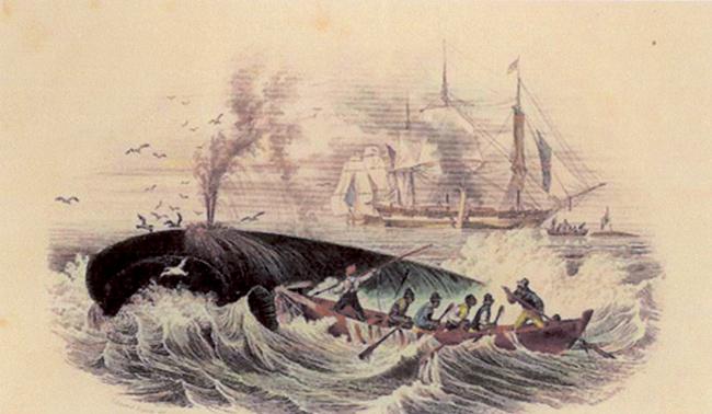 Le due scene di caccia alla balena di Ambroise Louis Garneray descritte da Melville nelle pagine di Moby Dick che qui proponiamo