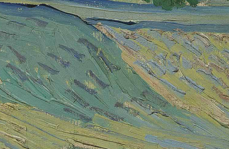 L'area del prato, nel dipinto di Van Gogh. E' visibile un impasto molto denso, di fondo, scaturito dalla mescolanza dei colori sulla tela stessa. Colori dati a corpo, senza diluizione, che appaiono in rilievo. Le linee colorate hanno la funzione di creare una direzionalità prospettica e di sagomare, nella diversa inclinazione, gli scoscendimenti del terreno. L'opera si presenta realizzata in due fasi. La prima che raggiunge il 90 per cento della stesura. La seconda, a fondo asciutto o quasi asciutto, è un intervento di di finitura, cromatico-lineare