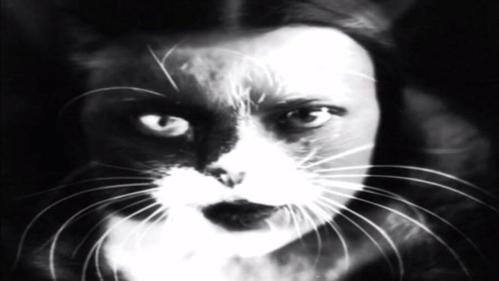 W. WULZ. Io +gatto, 1932, stampa su gelatina ai sali d'argento, 29,4 x 23,3, New York, Metropolitan Musueum of Art