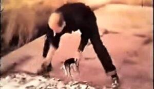Jackson Pollock durante la realizzazione di un'opera, con la tecnica del dripping