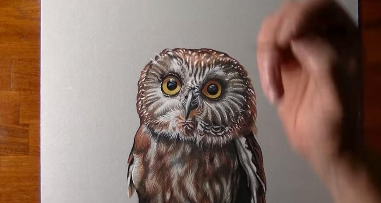 Disegnare dipingere gufo stile arte - Come disegnare un cartone animato di gufo ...