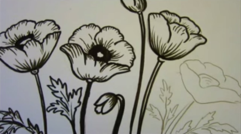 Disegnare Dipingere Papaveri I Consigli I Tutorial Stile Arte