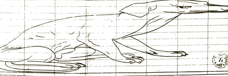 """Samuel Marolois, """"Schema anamorfico arcaicizzante"""", 1614"""