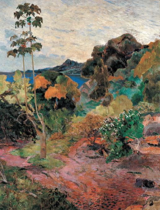 """Vegetazione tropicale"",1887"