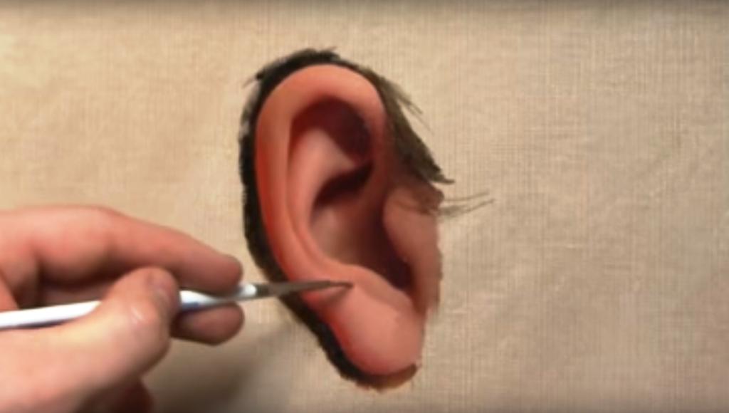 disegno orecchio
