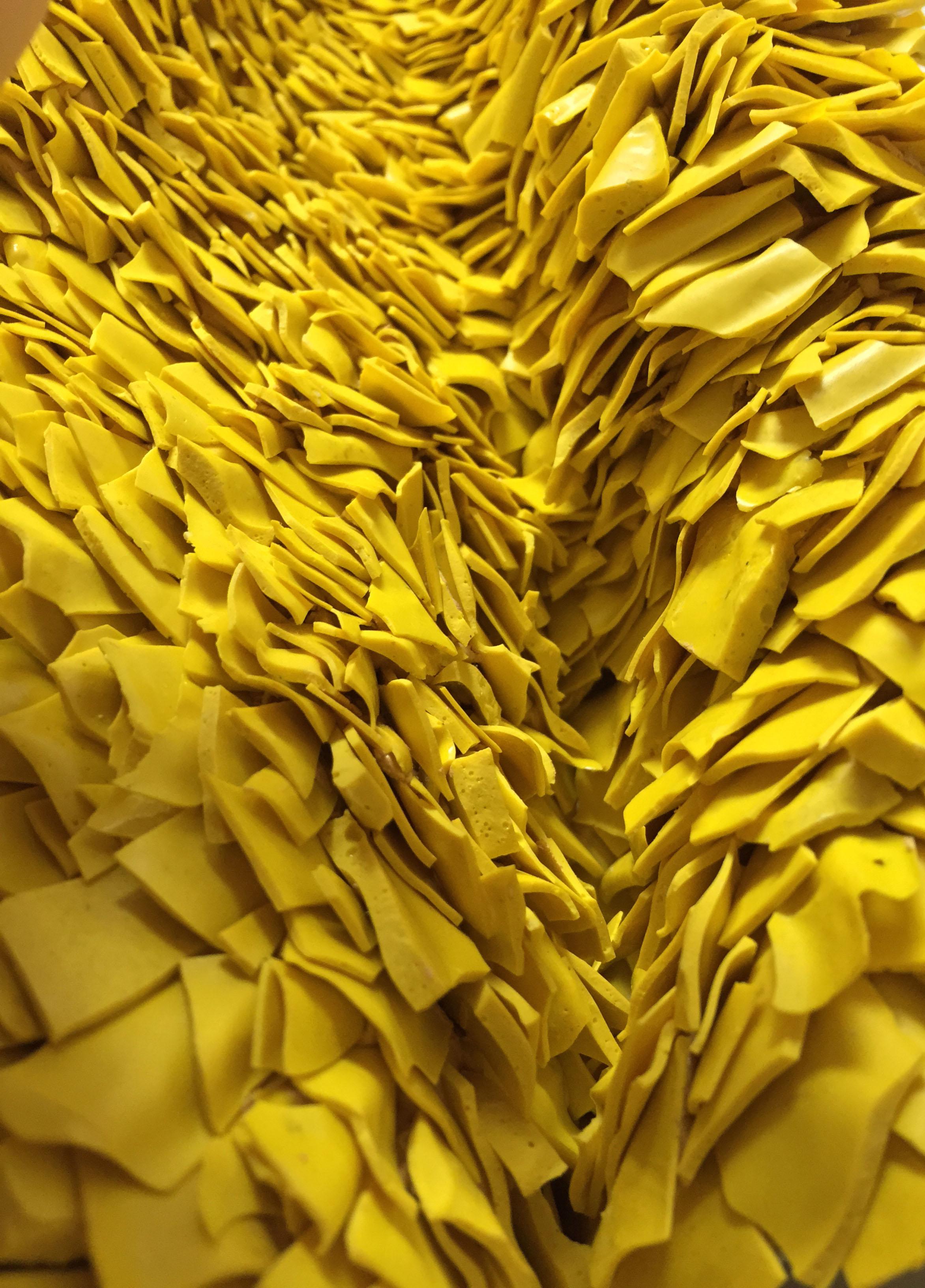 dettaglio gialla BASSA