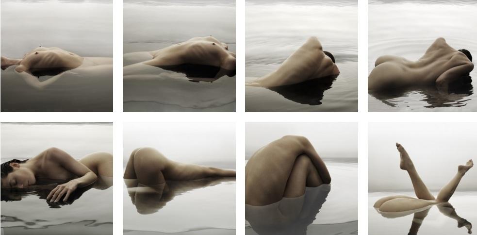 Una veduta d'insieme delle fotografie appartenenti al ciclo Creature dell'acuqa