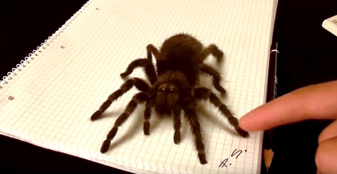 a ragno
