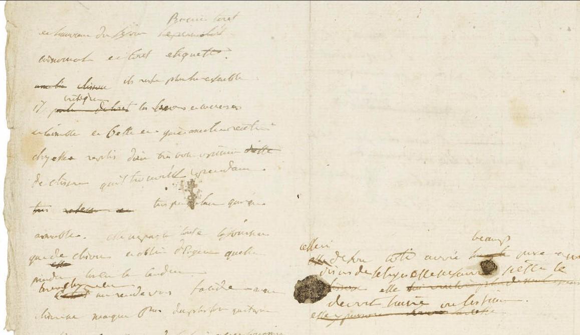 a napoleone manoscritto