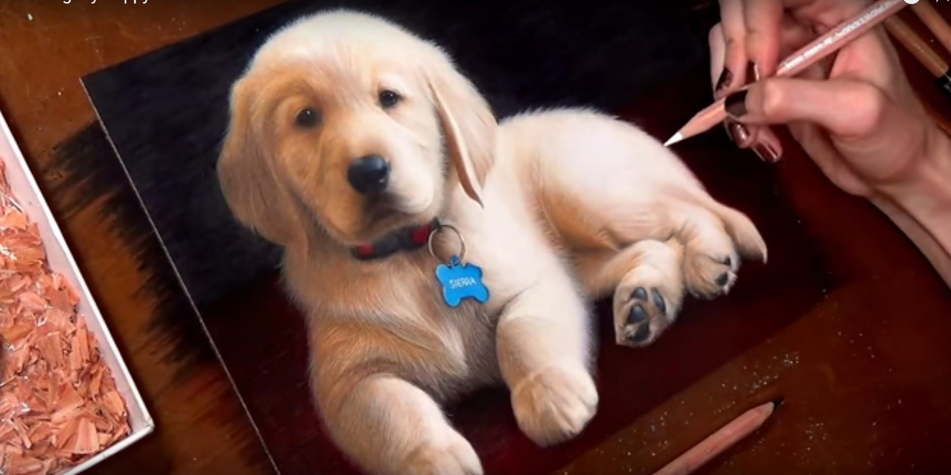 Come disegnare cos un cucciolo di golden retriever il for Immagini di cani da disegnare